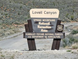 LABOR OF LOVE MARATHON – LOVELL CANYON